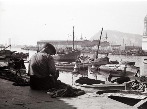 els peixaters de la mediterrania barcelona foto1